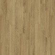 DES DELUXE 555 CYCLE 5381 INCREDIBLE CLASSIC OAK V4 MUS